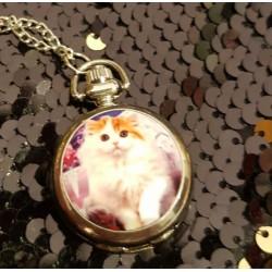 Montre à gousset collier chat roux et blanc