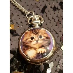 Montre à gousset collier chaton tigré