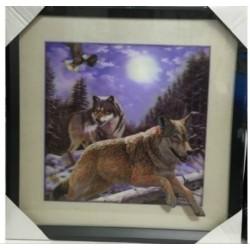 Cadre  couple de loups gris