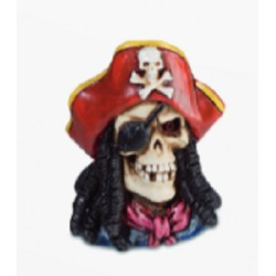 Aimant Pirate