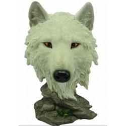 Tête de loup blanc